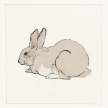 Rabbit - Anne Waltz