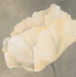 Poppy in white III