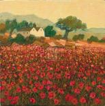 Poppy Field Near Aix-En-Provence