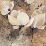 Magnolia II - Yuliya Volynets