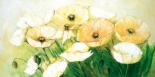 Tender Poppies