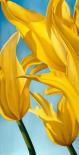 Dancing Yellow