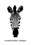 Everything is Zebra - Anne Waltz