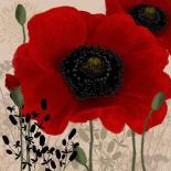 Red poppies I - Wood Linda