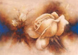 Rose II - Betty Jansma
