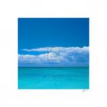 Tropical Waters II