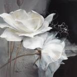Wealth of Flowers I - Willem Haenraets