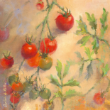 Tomates cerises I