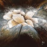 Fleur étoile II