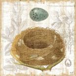 Botanical Nest III