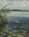 Water Lilies Earnewâld II