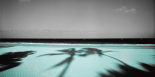 Palm & Sands - Anne Valverde