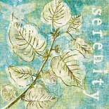 Spring Renewal III