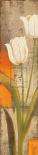 Fresco Flowers II