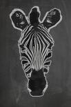 Zebra Gris - Anne Waltz