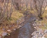 Ochoco Creek