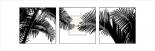 Palm Frond Triptych II