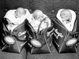 Triplets 1959