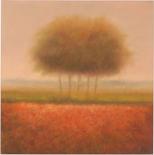 Orange Group Of Trees