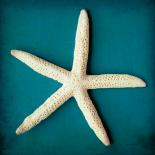 Sea Star II