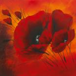 Quand l�amour fleurit III - Isabelle Zacher-Finet