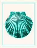 Mixed Nautical Turquoise on Cream d