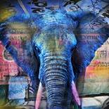 Elefantastic - Mascha de Haas