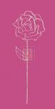 Romantic Rose I