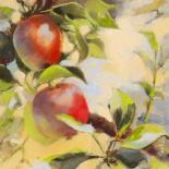 Les pommes I