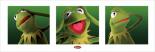 Kermit - Boxes