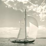 Sunlit Sails II