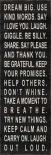 Dream Big - use kind words