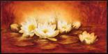 Water Lilies - Betty Jansma