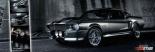 Easton - Mustang Gt500