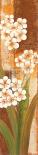 Tropical Blossom I