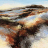 Dune I - D Boersma