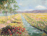 Fields - Nicole Laceur