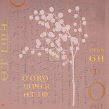 Mimosa Square II