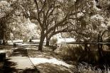 Walkers Pond I