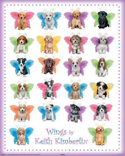 Keith Kimberlin - wings dogs