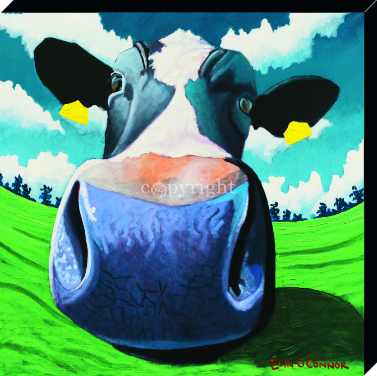 Cow IV Big Nose